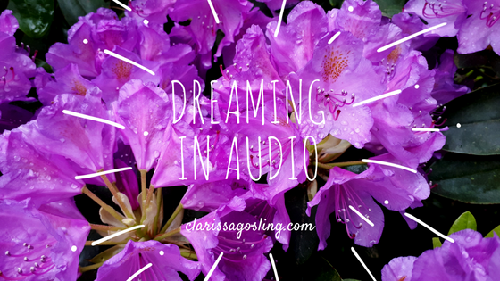 Dreaming in audio