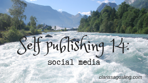 Self publishing series 14